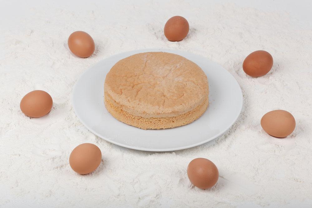 Piskóta Tortalap - Sponge Cakebase 1